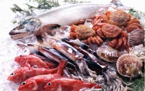 Qué escoger a la hora de comprar pescado y mariscos