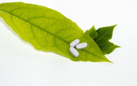 El Tratamiento Homeopático como cura de diversas enfermedades