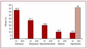 marco franzreb especilista en dietas