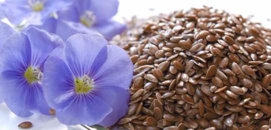 10 Beneficios de la semilla de Linaza